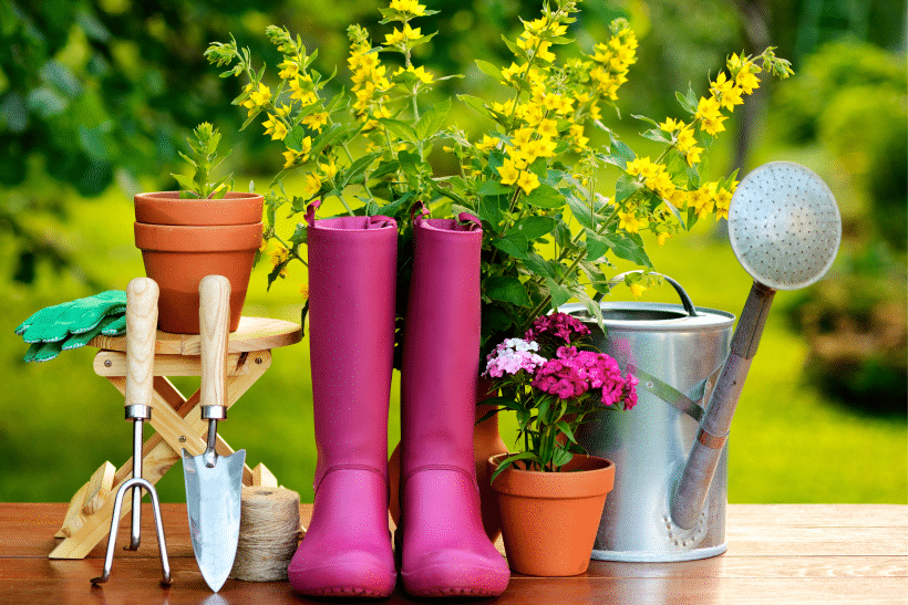 Essential Gardening Tools For A Beautiful Garden