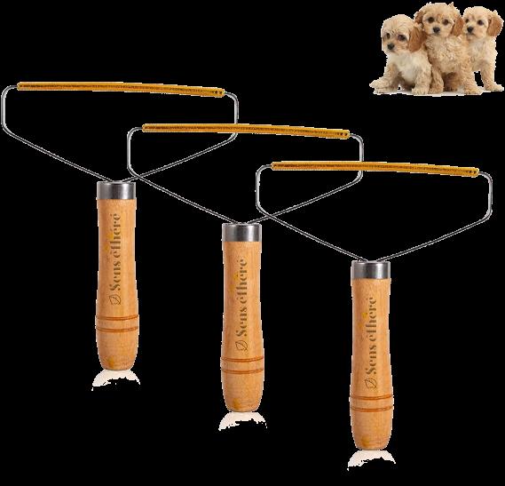 Capture Total Care Kit for Carpet